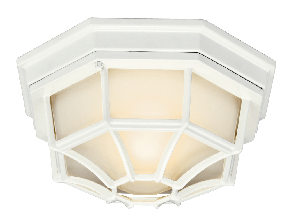 Outdoor Ceiling 1Lt Fl