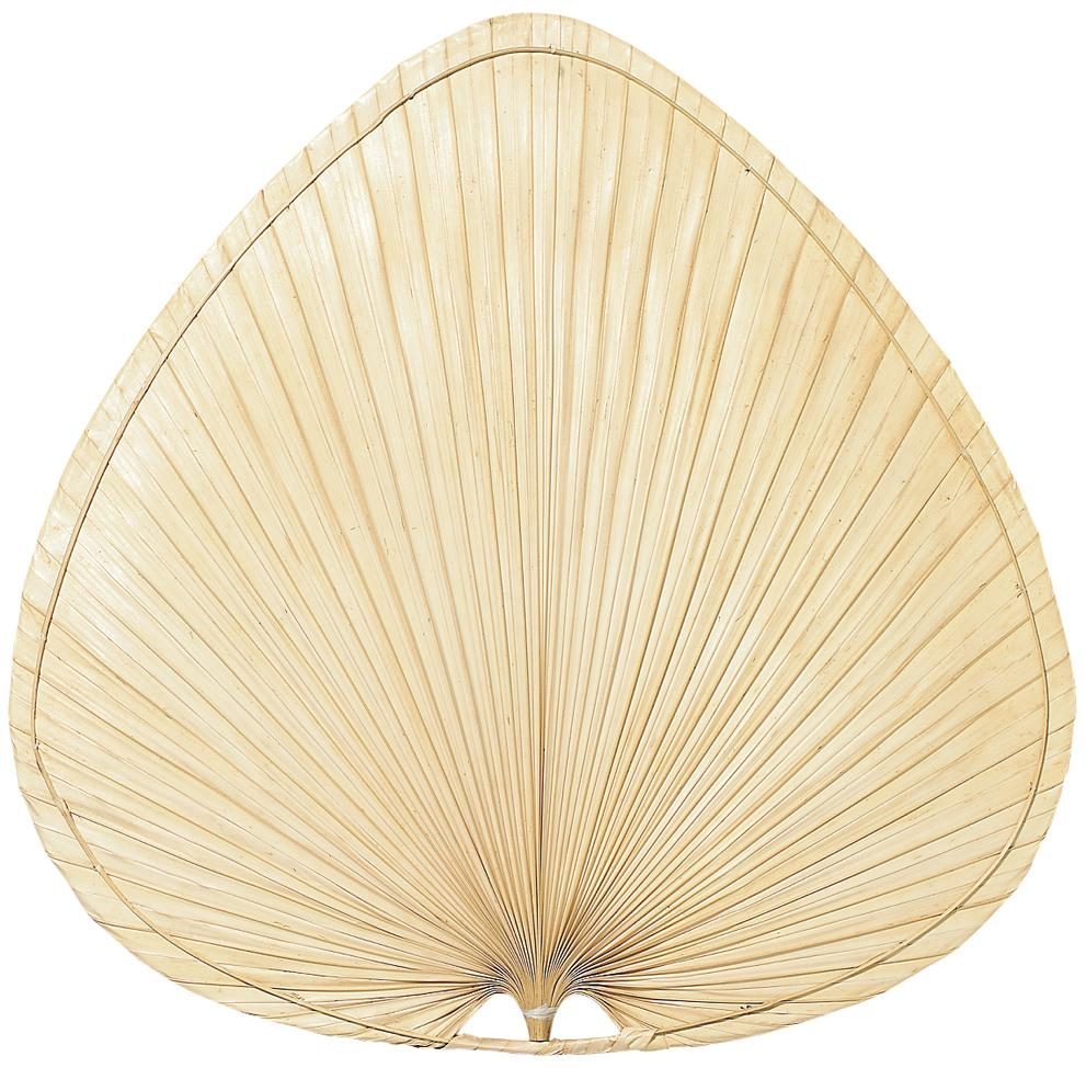 "18"" BLADE: WIDE OVAL PALM - SET OF 5"